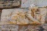 Hierapolis - lion