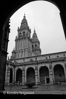 santiago cathedral (14)