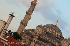 blue mosque (2)