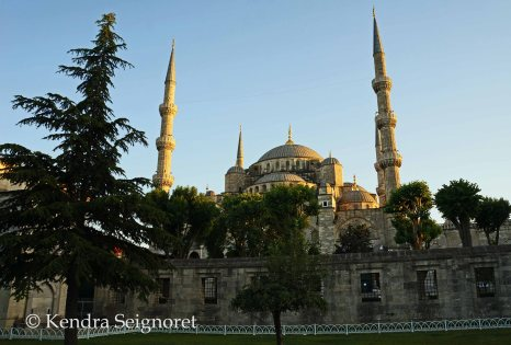 blue mosque (22)