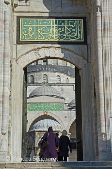 blue mosque (4)