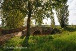 Camino Frances Bridges (16)