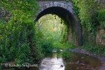 Camino Frances Bridges (22)