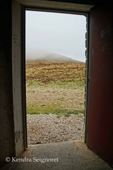 windows and doors (1)