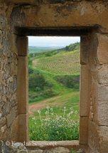 windows and doors (12)