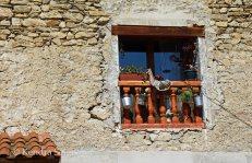 windows and doors (2)