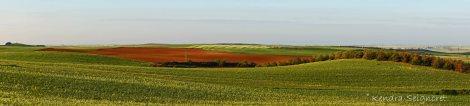 Countryside (15)