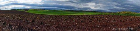 Countryside (8)