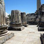 Didyma - Temple of Apollo (2)