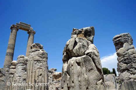 Didyma - Temple of Apollo (3)