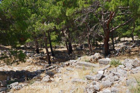 Priene - ruins