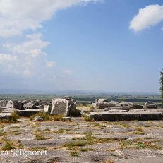 Priene - Temple of Athena view from stage