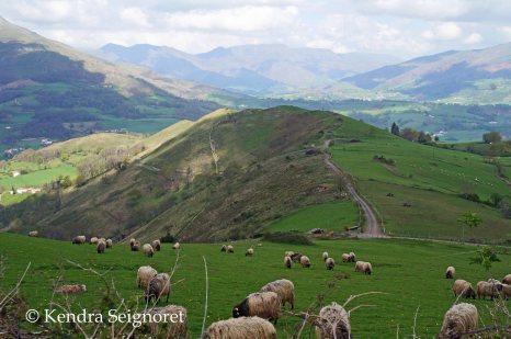 Steep Hills