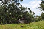 Fort Island - Fort (4)