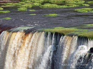 Waterfalls' Edge