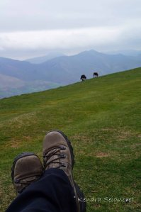 Relaxing in the Pyrenees