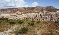 rose valley (2)