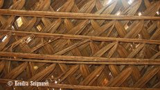 Thatched Roof of Structures