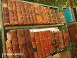 Plaza des Armas - books