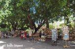 Plaza des Armas - books (2)