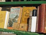 Plaza des Armas - books (3)