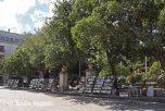 Plaza des Armas - books (5)