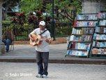 Plaza des Armas - books and musician