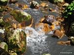 Diamond Falls (7)