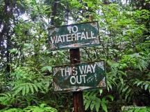 Enbas Saut Trail (1)