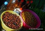 Market in Selcuk (3)