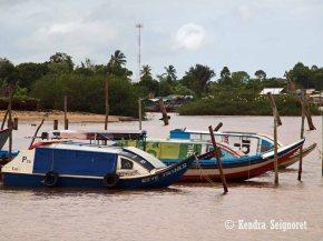Parika - Boats
