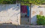 Scenes around Selcuk (2)