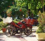 Scenes around Selcuk (5)