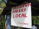 cassava (1)
