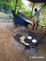 cassava (3)