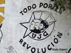 Everything for the Revolution