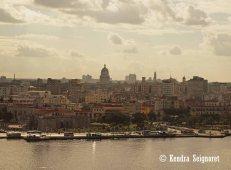 Havana View