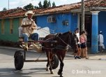 Visit Towns - People and Horses