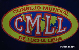 One of the most popular lucha libre organizations: Consejo Mundial de Lucha Libre (CMLL)