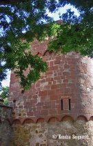 walls - Tour des Husgenossen 1420 (1)