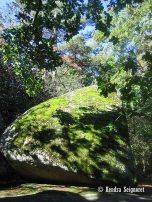 giant granite rock