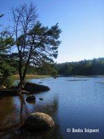 Lake Merle