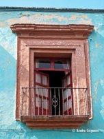 windows (8)