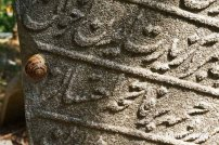 Eyup Cemetery (10)