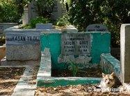 Eyup Cemetery (5)