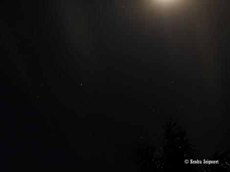 Guyanese Night