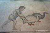 animal husbandry (4)