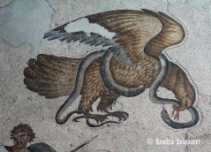 mythical - Eagle and Snake symbolizes victory of light over darkness