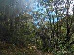hike (13)