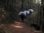 hike (4)